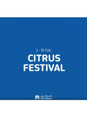 Citrus Festival