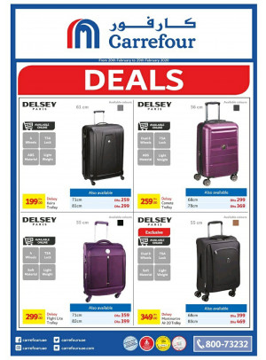 Wow Sale on DELSEY Travel Bags