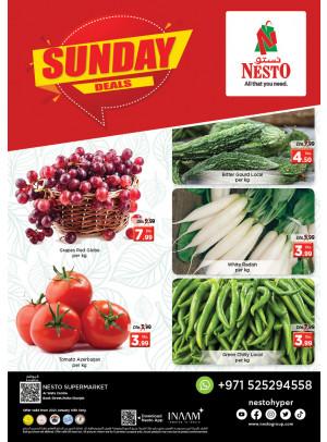 Sunday Deals - Rolla